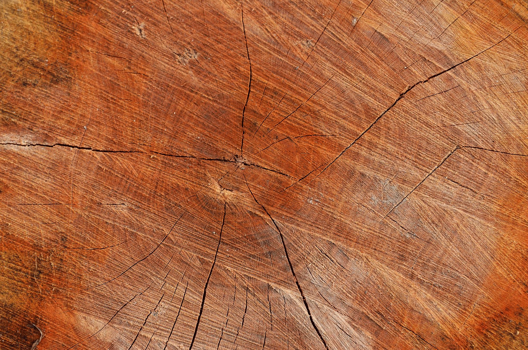 Wrekin Logs